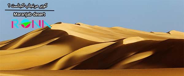 نمایی زیبا از شنزارهای کویری