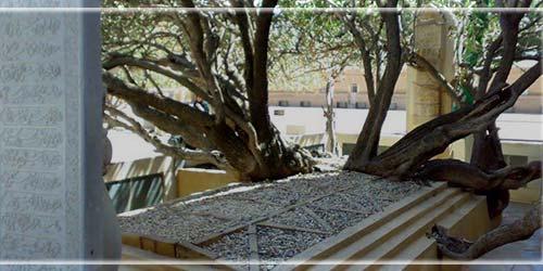 آرامگاه شیخ احمد جامی | مزار